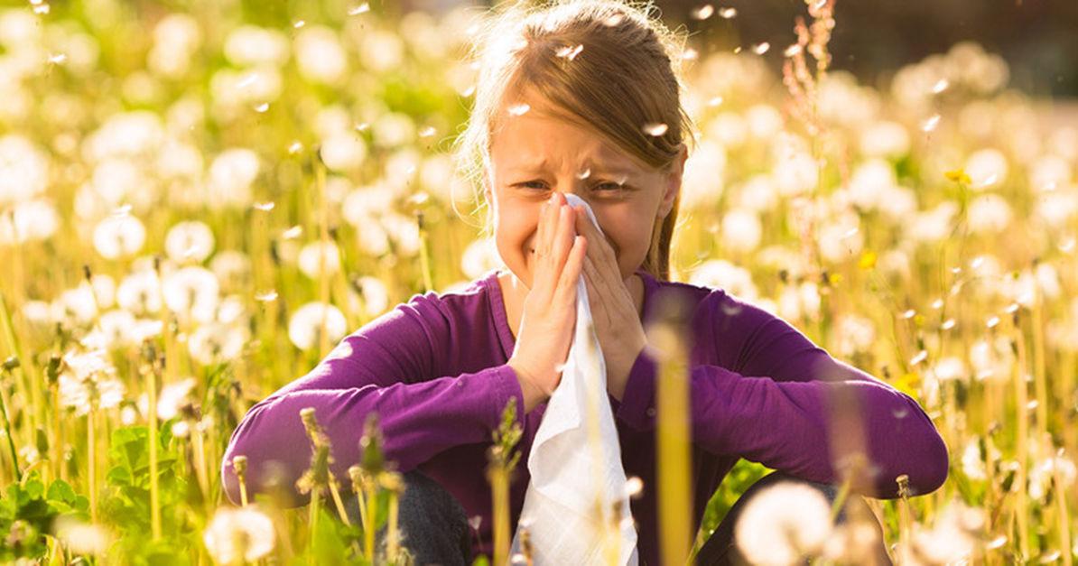 pollenflug in bayern aktuelle pollenbelastung f r deine. Black Bedroom Furniture Sets. Home Design Ideas