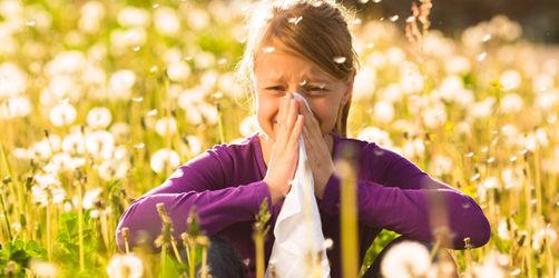 Pollenflug in Bayern - aktuelle Pollenbelastung für deine Region