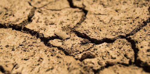 Wasserknappheit: Jetzt wird die Hitze wirklich gefährlich!