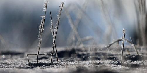 Winter-Comeback: Hier müsst ihr am Wochenende mit Schnee und Frost rechnen