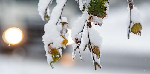 Start in die Adventszeit: So stehen eure Schnee-Chancen