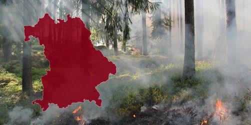 Hitzeauftakt in Bayern: So hoch ist die Waldbrandgefahr in eurer Region