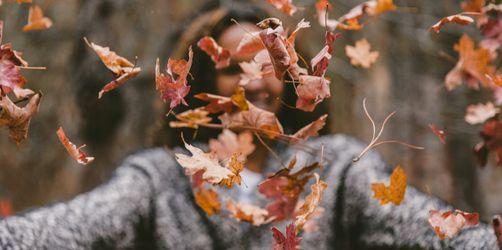 Meteorologischer Herbstanfang: So wird das Wetter im Herbst 2020
