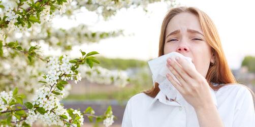 Heuschnupfen-Wahnsinn: Diese Pollen machen Allergikern jetzt das Leben schwer
