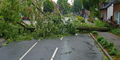 Schäden durch Sturmtief: Darauf müsst ihr achten - diese Versicherungen zahlen