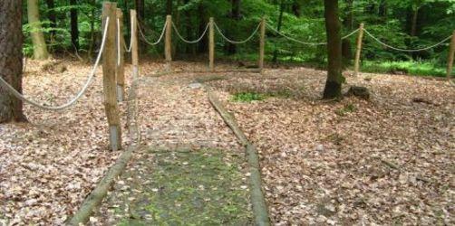 Franken: Natur erleben auf dem Walderlebnispfad Hutmannswald