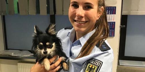 Happy End: Bundespolizei bringt vergessenen Hund heil zurück