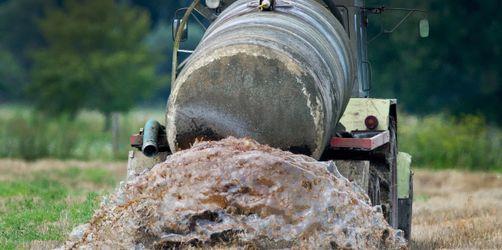 Nitrat im Grundwasser: So reagieren Bauern in Bayern auf das Gülle-Urteil