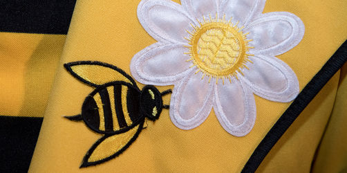 Rekordbeteiligung bei Bienen-Volksbegehren: So hat euer Landkreis abgestimmt