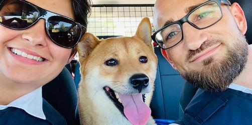 Kreis Regensburg: Selfie der Polizei mit Findelhund begeistert im Internet