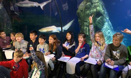 Sea Life München macht Inventur – Kids helfen beim Fischezählen