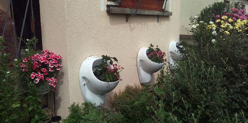 """Grüner Daumen am """"Glooh"""": Fränkin macht Klos zu Pflanzenkübeln"""