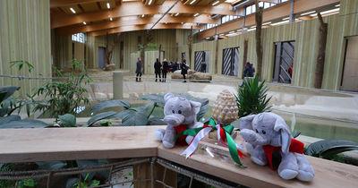 Neues Elefantenhaus in Augsburger Zoo eröffnet: Hier ziehen Burma & Targa ein