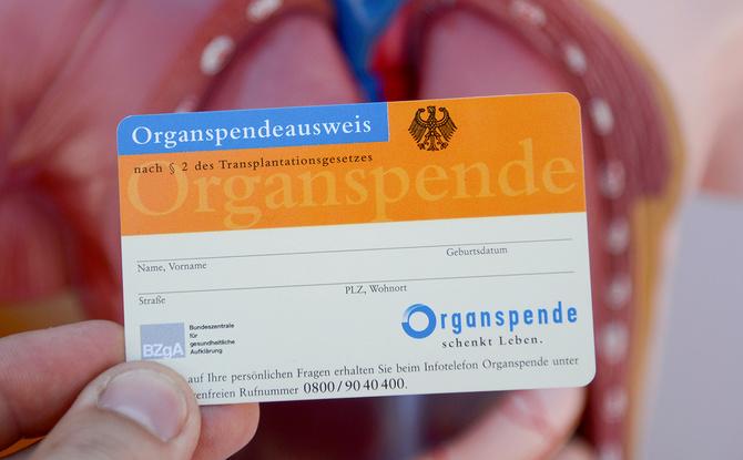 Mit einer Organspende Leben retten: Hier gibt es den Ausweis zum ausdrucken