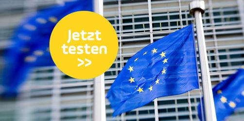 Das große Quiz zur Europawahl: Wie gut kennst du die EU? Teste dich!