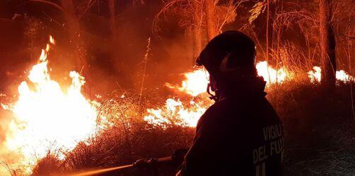 Hitzewelle & Waldbrände: Diese Urlaubsländer sind betroffen