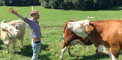 Florian Weiss wird zum Kuh-Flüsterer