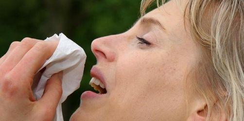 Hatschi! - Interessante Fakten über das Niesen