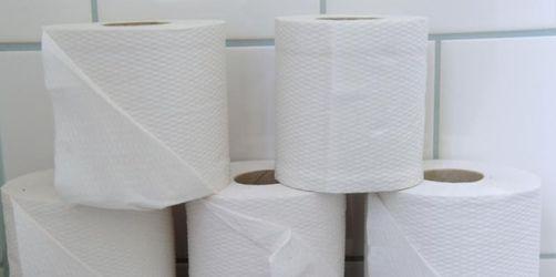 WC-Reiniger: An der Bürste führt kein Weg vorbei