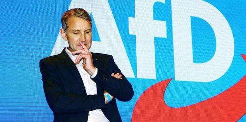 Gemäßigte AfD-ler kritisieren rechten Parteiflügel