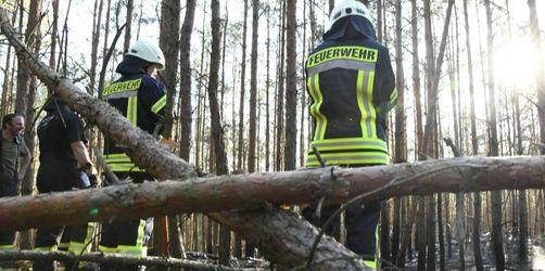 Hohe Waldbrandgefahr in Brandenburg und Berlin