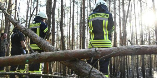 Waldbrandgefahr: Viele Osterfeuer in Ostdeutschland abgesagt