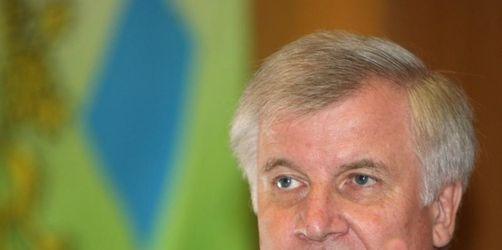 Seehofer: Die Steuern werden gesenkt