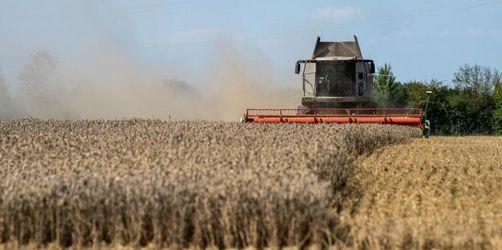 Dürre stellt auch Bayerns Mühlen vor Herausforderungen