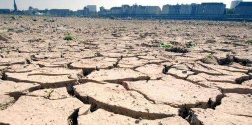 Klimaforscher mahnen eindringlich zum Handeln