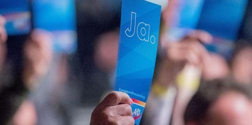 AfD wählt in Magdeburg 40 Kandidaten für Europawahl