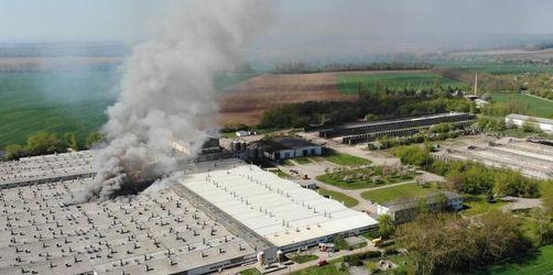 Etwa 2000 Ferkel bei Brand in Schweinezuchtanlage gestorben