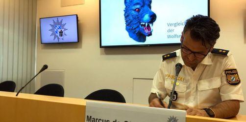 Bis zu 60 Hinweise zu Vergewaltiger mit Wolfsmaske