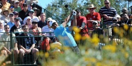 Glänzendes Comeback von Tiger Woods