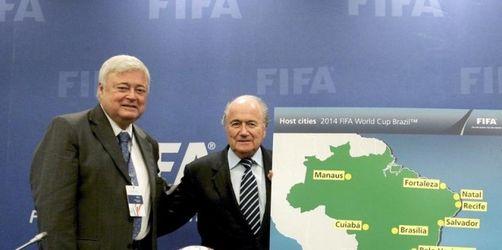 Zwölf Spielorte für WM 2014 - Rio will das Finale