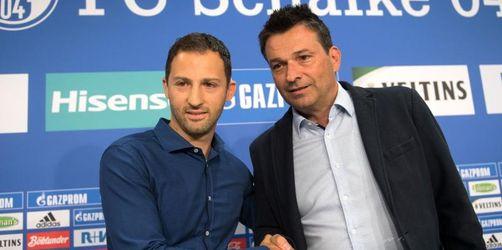Heidel lobt Coach Tedesco als Krisenmanager: Nie gezweifelt
