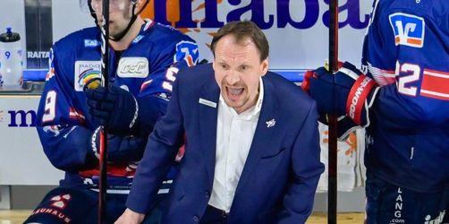 Mannheimer Eishockey-Trainer Gross muss Geldstrafe zahlen