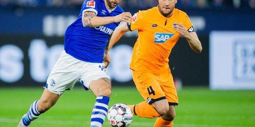 Hoffenheim auf Champions-League-Kurs - Sieg bei Schalke 04