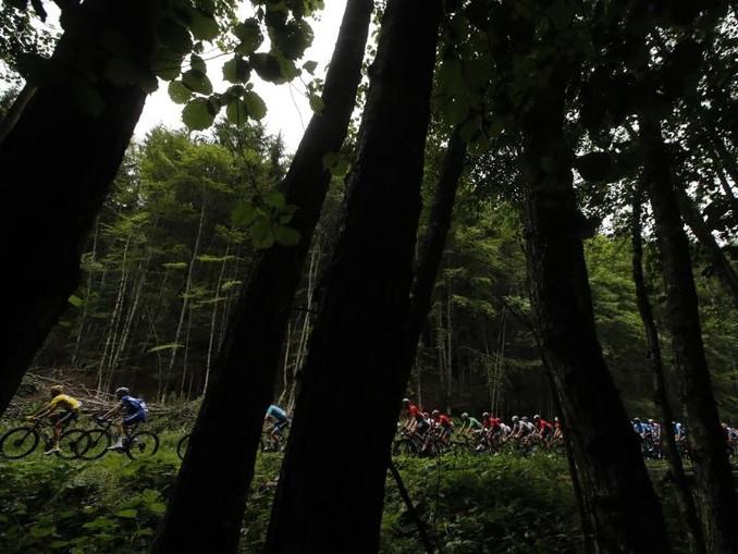 Die Fahrer haben bei der siebten Etappe der Tour von Belfort nach Chalon-sur-Saône 230 Kilometer zu überwinden. Foto:Christophe Ena/AP