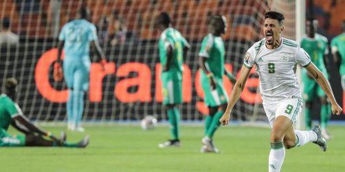 Algerien gewinnt Afrika-Cup