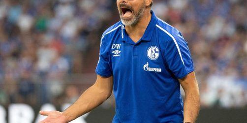 Schalke will Lauf fortsetzen - Wagner: «Wahnsinnig Lust»