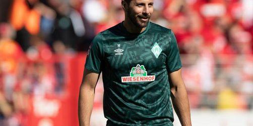 Bayern als Jäger - Pizarro vor weiterem Rekord