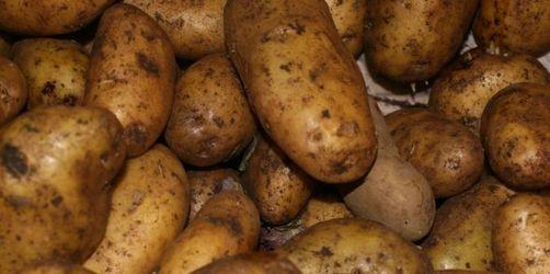 Lebensmittel statt Laptop: Schon 17 Betrugsfälle