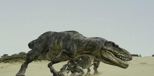 Fast zum Anfassen: «Dinosaurier Live 3D»