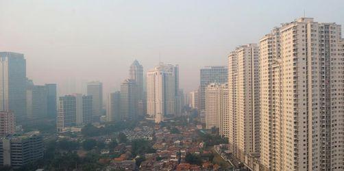 Indonesien will neue Hauptstadt im Dschungel