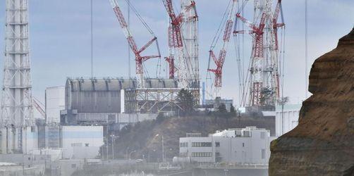 Freispruch für Ex-Atommanager in Japan
