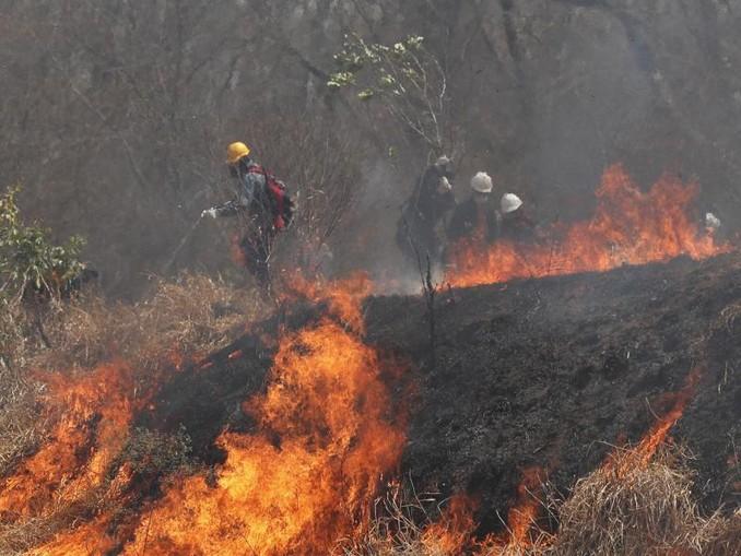 Polizei und Feuerwehrleute versuchen, ein Feuer im Chiquitano-Wald am Rande zu löschen. /AP/dpa