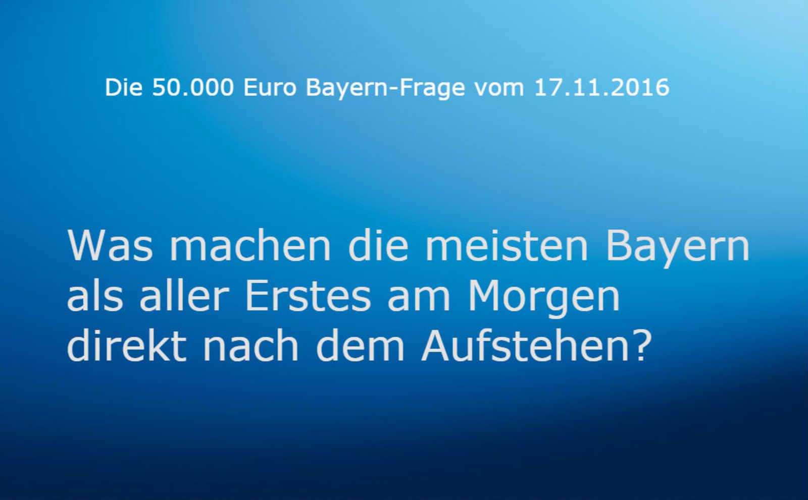 bayernfrage_1711n