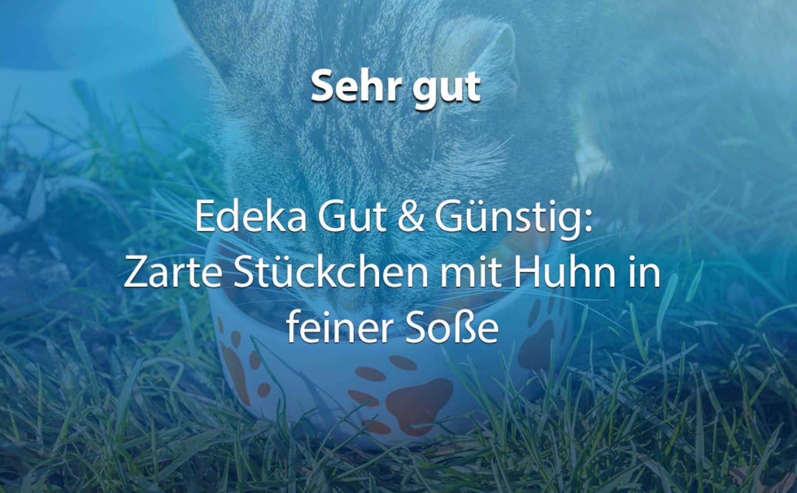 Katzenfutter Im Test Finger Weg Von Diesen Marken Antenne Bayern