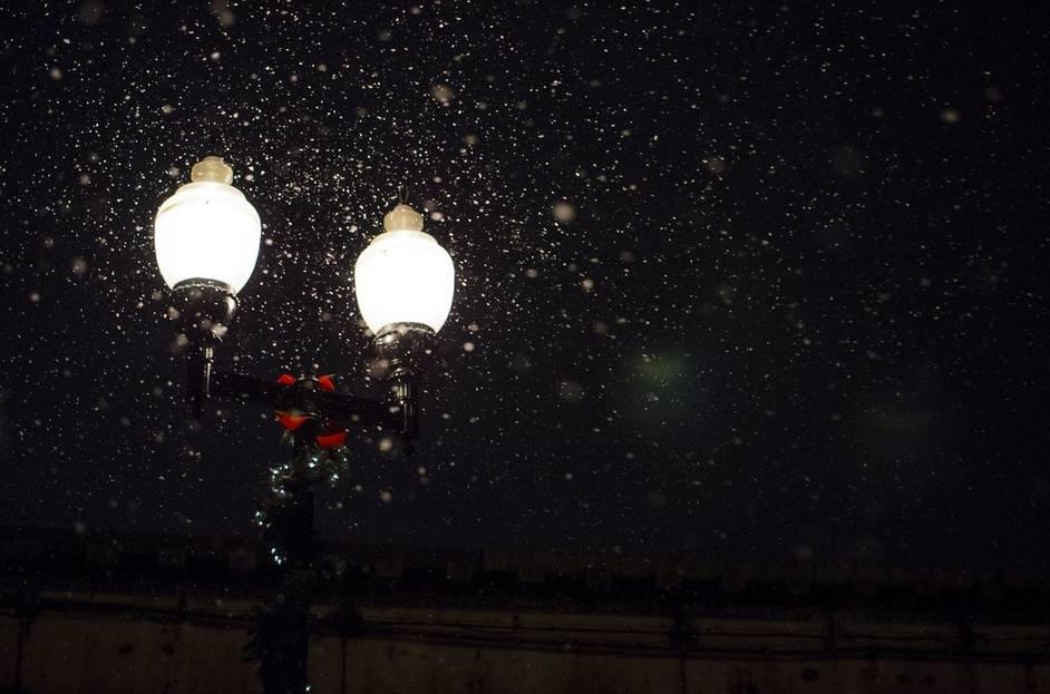Wann Leuchten Glühwürmchen