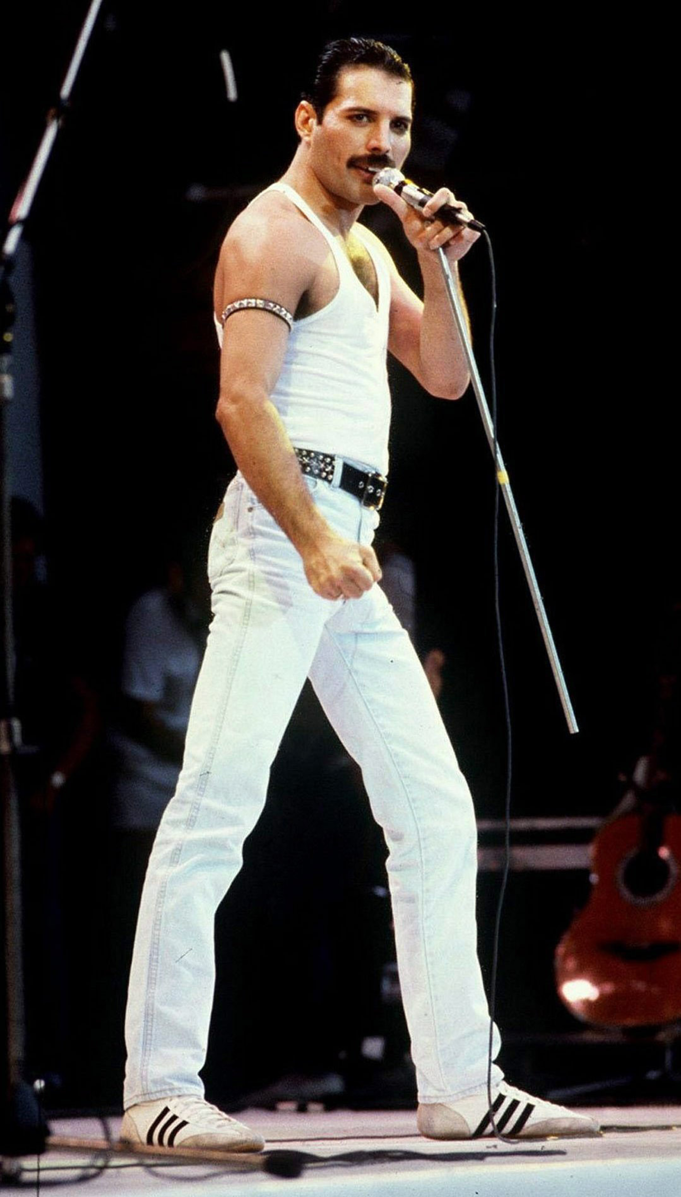 Freddie Mercury Erbe